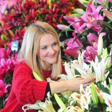 The Harrogate Spring Flower Show 1